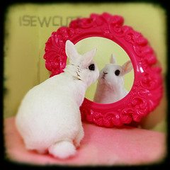 mirror mirror on the wall ttv cute bunny fancy mirror reflection photo by isewcute by isewcute