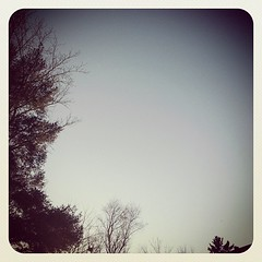 My sky. #day8 #janphotoaday