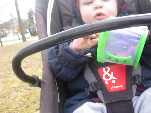 lucyphoto: baby strapped in stroller