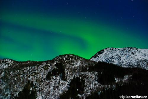 Aurora Borealis  over Kongsmark