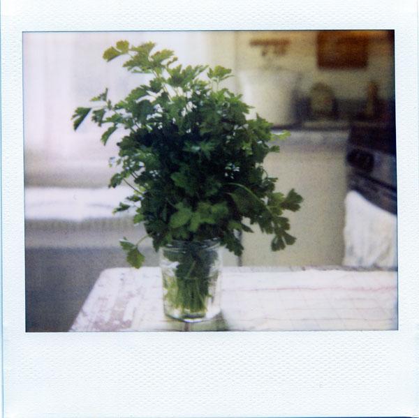 parsleysm