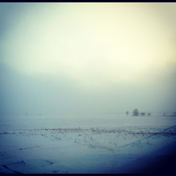 12/365+1 Winter Weather #snow #prairie