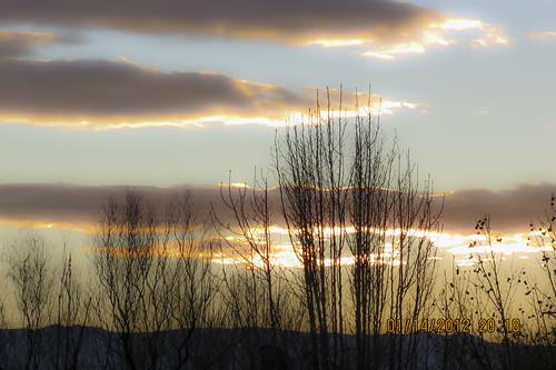 sky cloud sun newmexico tree nature sunrise canon branch january albuquerque nm 2012 ruby3 supershot coth5 mygearandme mygearandmepremium mygearandmebronze mygearandmesilver mygearandmegold mygearandmeplatinum mygearandmediamond sunrays5