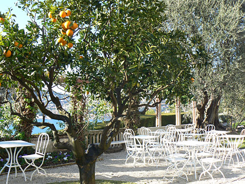 orangers.jpg