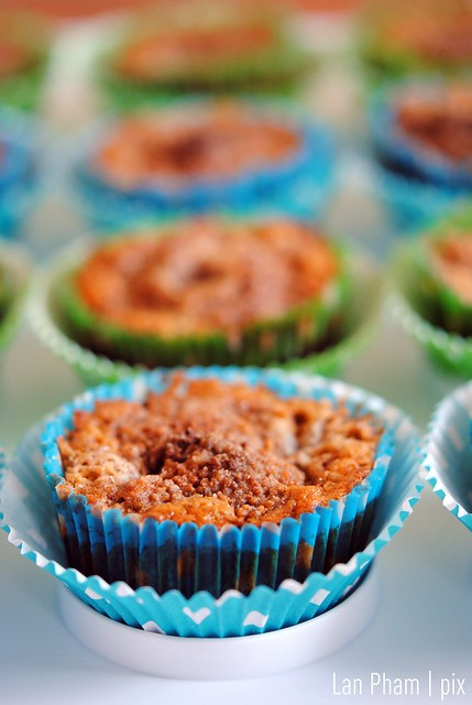 Soak Spelt Flour Chocolate Chip Muffins