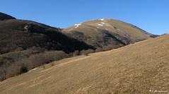 Monte Pennino