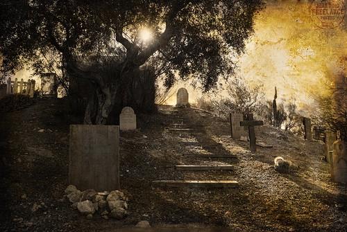 El cementerio de las ánimas  Olvidadas by joan_roig