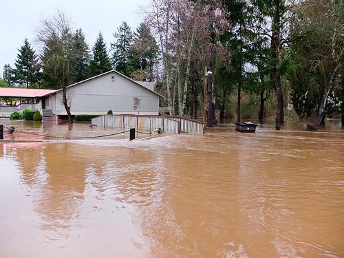 Flood-2470