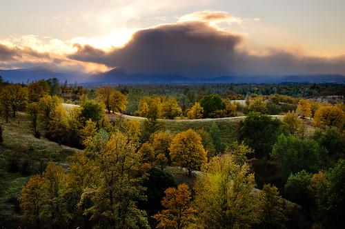 ca autumn trees mountains landscape oak pin redbluff hwy36 yollobolly