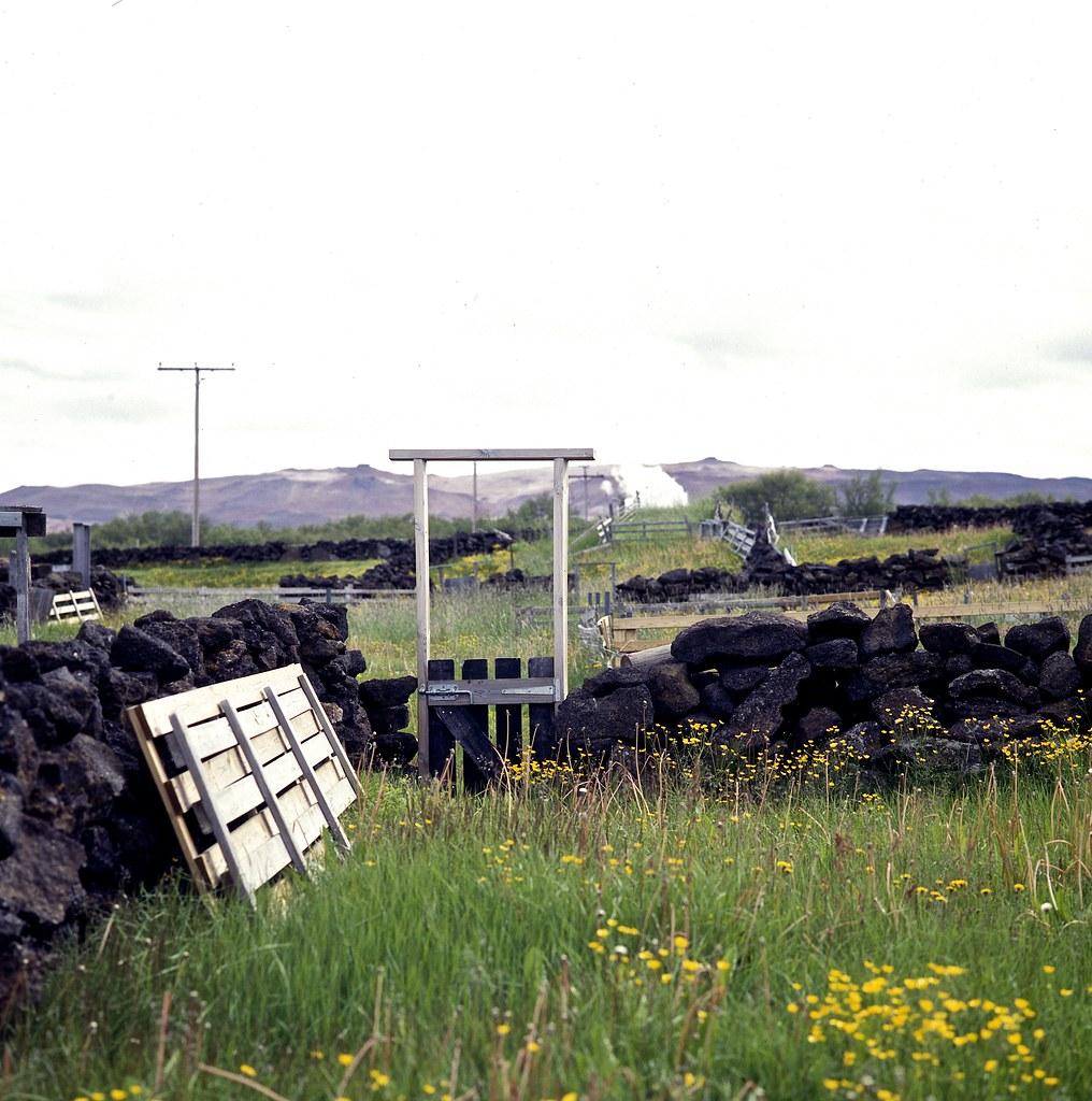 "Image titled ""Icelandic Fencing, Mývatn, Iceland."""