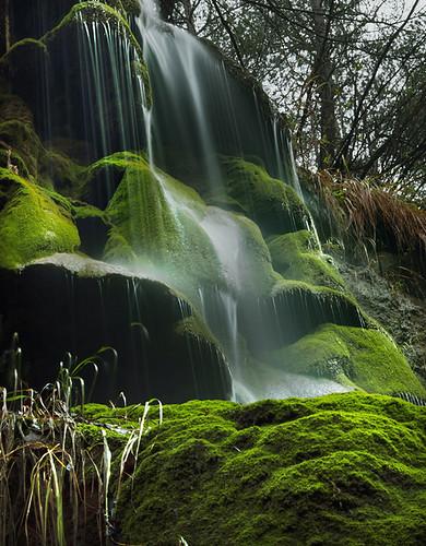 naturaleza verde green nature water waterfall agua nikon natura catalonia catalunya aigua cataluña verd cascada molsa bergueda vilada d7000 panoramafotográfico rememberthatmomentlevel1