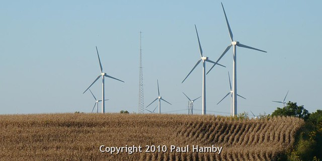 Wind Capital Group's wind turbines. Photo credit: Paul Hamby