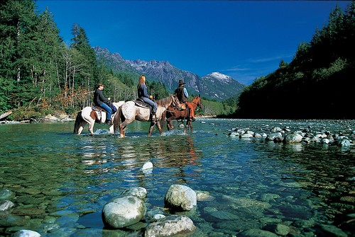 Horseback Riding at Clayoquot Wilderness Resort