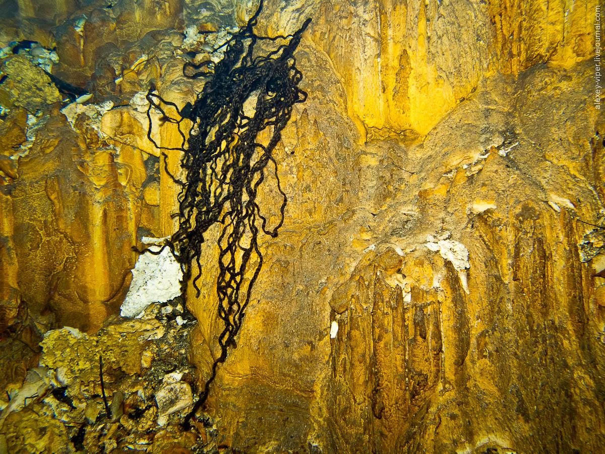 2012.01.12-2012.01.26_dive_safari_[cuba]-diving-029
