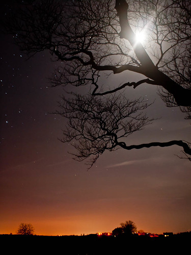 1000/712: 01 Feb 2012: Moonlight over Allerby by nmonckton
