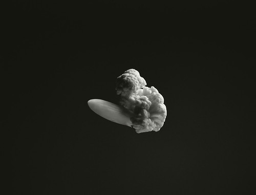 Cauliflower Hindenburg, 1937