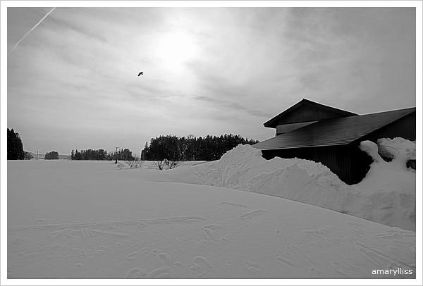 2012日本東北Day4-247山形印象