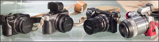 Panasonic GX1 20mm f/1.7 GF3 14mm f/2.5 Sony NEX-7 NEX-5n 30mm f/3.5 macro Voigtlander 28mm f/2 Ultron