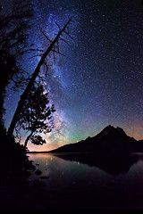 Stars over Jenny Lake, Grand Tetons