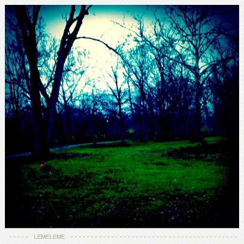 Photo Stream-724