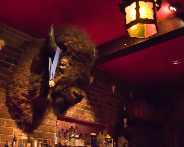 Bison Head at Club Mallard