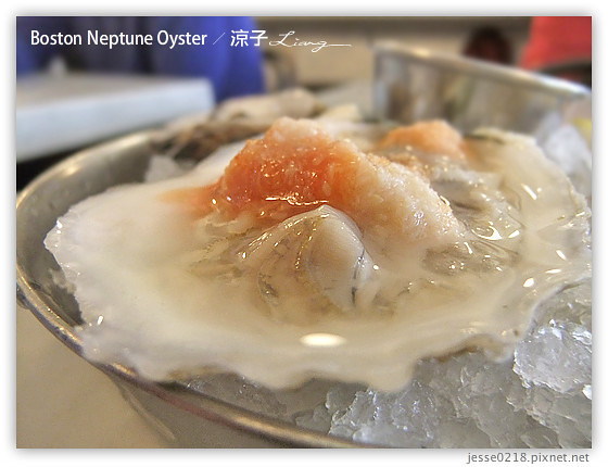 Boston Neptune Oyster 4