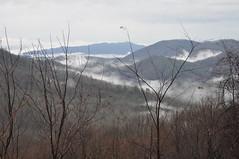 Smoky Mountain Area