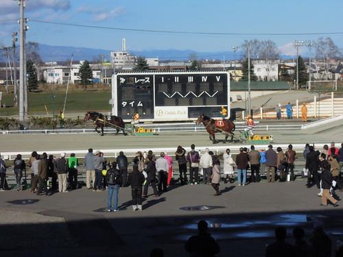 ゴール前の最後の直線。この写真は第3レースのものなのだが、着順は2-7。これが逆だったらアイマス民的には歓喜だったのだが。