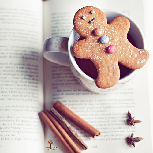 GingerMan by Just a Click {♥ Sara Photography ♥}