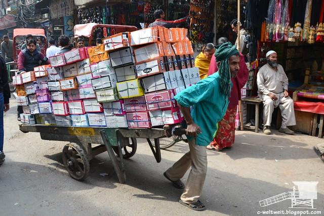 Old Delhi (38)