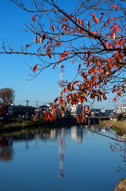 古利根の秋