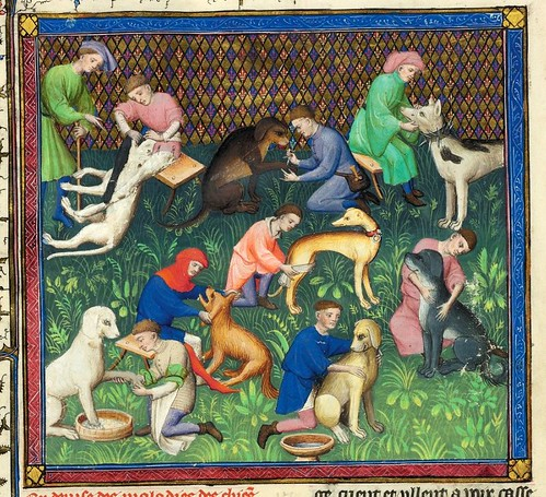 004-Le Livre de la chasse-1407- Gaston Phoebus- MS M. 1044 – fol 31v-detalle-© The Morgan Library & Museum