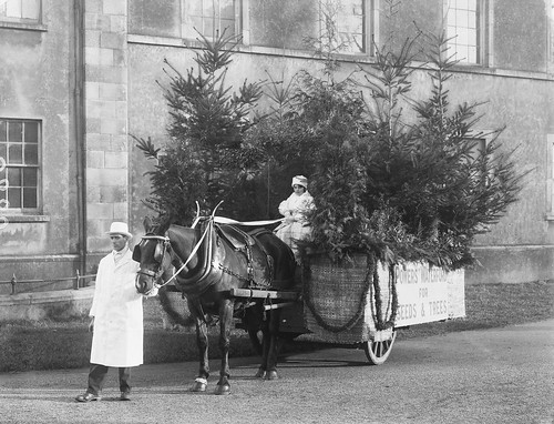 Is she old enough to drive that thing? by National Library of Ireland on The Commons