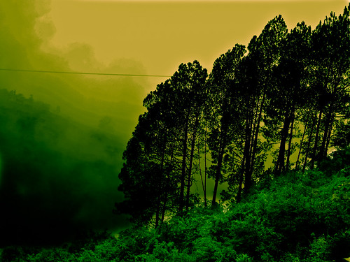 india green nature hill mussoorie