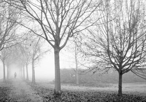 Fotografare nella nebbia. by Claudio61 una foto ferma un ricordo nel tempo