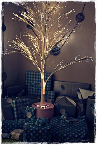 boom donker met zeef