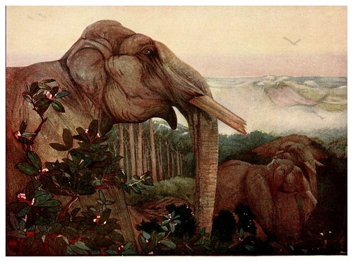 026-Los elefantes- The jungle book 1913-Ilustrado por Edward Detmold