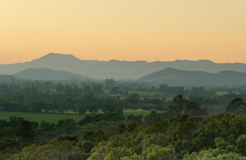 california trees sunset mountains green nature northerncalifornia yellow landscape twilight nikon wine hill fromabove valley napavalley napa tele 55200 mountainridge exposureblending nikon55200 d7000 nikond7000 andreaskoeberl