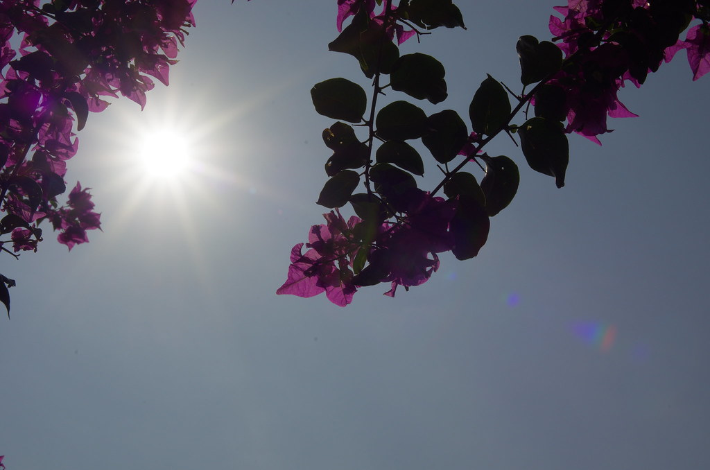 難得假日天氣好 去三仙台附近晃晃