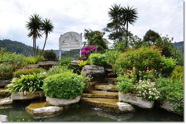 Colmar Tropicale Garden