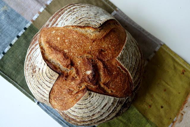 6595758663 9592ede83f z 2012. La multe paini! cu Apa.Faina.Sare.