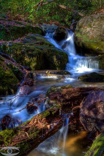 Tom's Creek Cascades 581
