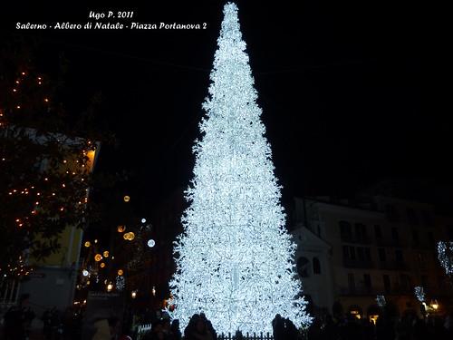 Salerno - Albero di Natale - Piazza Portanova 2
