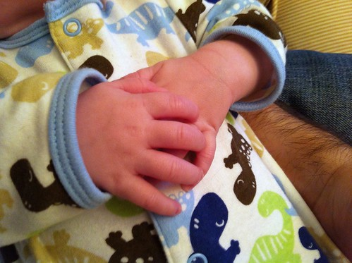 Perfect little hands