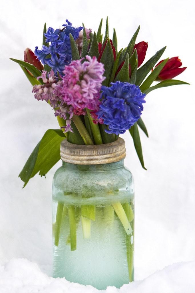 Silk Wedding Bouquets Perth Wa : Frozen flower full movie fall silk wedding