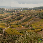 Crete Landscape and Agriculture - Greece