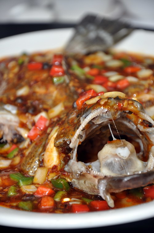 wok baked sea grouper with Lao Gan Ma and Sichuan chilli bean paste