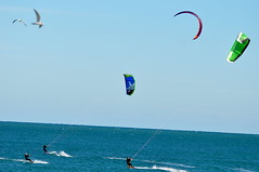 toy(0.0), surface water sports(1.0), individual sports(1.0), sports(1.0), windsports(1.0), wind(1.0), extreme sport(1.0), water sport(1.0), kitesurfing(1.0), sport kite(1.0),