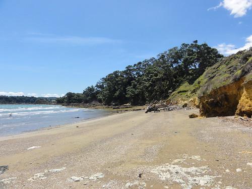 Private beach below Te Whau