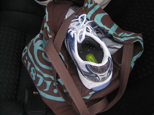 IMG_3923  Gym Bag